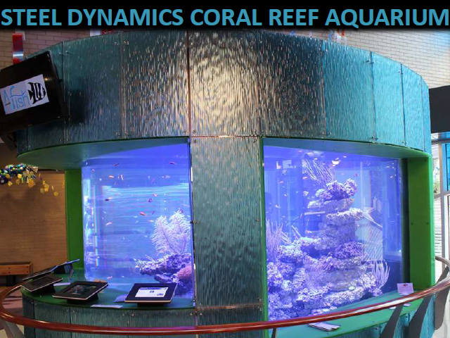 center-in-the-square-steel-dynamics-coral-reef-aquarium